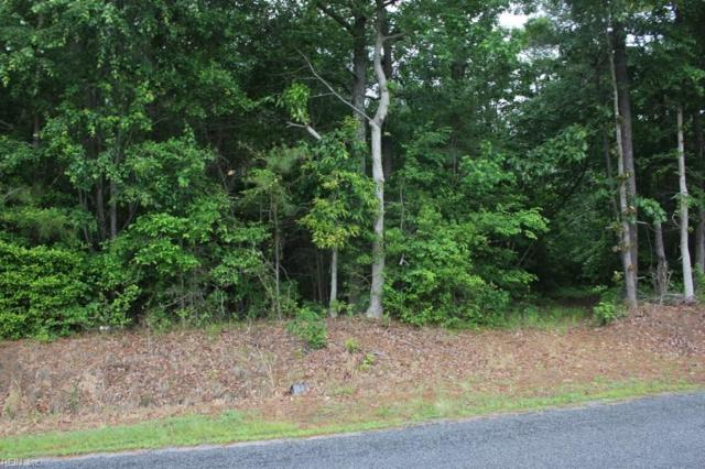 65AC Jenkins Mill Rd, Isle of Wight County, VA 23851 (#10116607) :: The Kris Weaver Real Estate Team