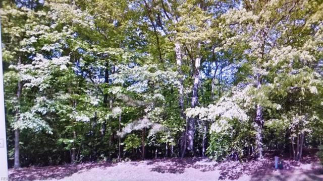 109 Ll Greenwood Dr, York County, VA 23185 (#10123362) :: Abbitt Realty Co.
