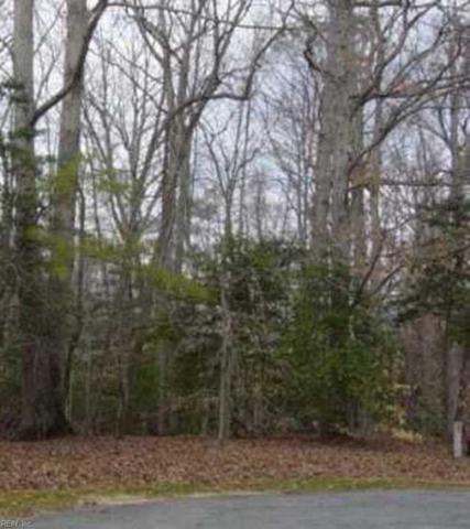 107 Greenwood Dr, York County, VA 23185 (#10123364) :: Abbitt Realty Co.