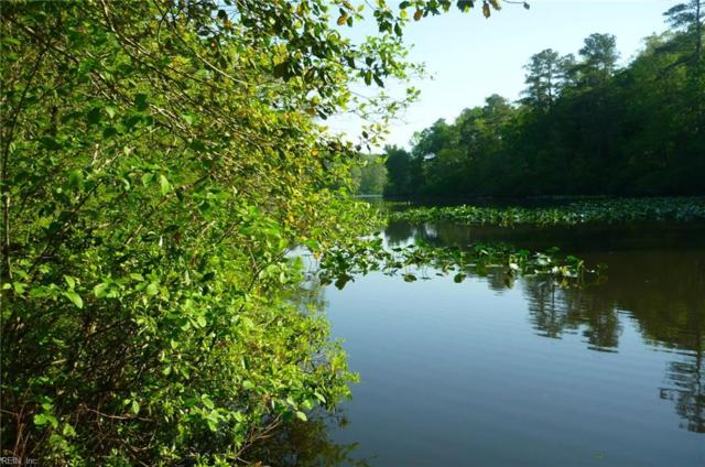 LOT 3 Reed Dr, Middlesex County, VA 23175 (MLS #10123390) :: AtCoastal Realty