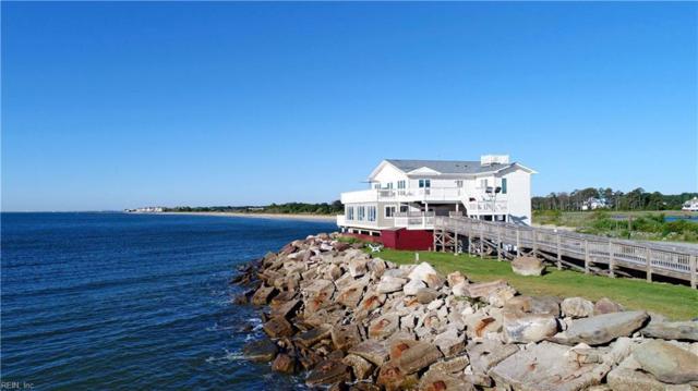 155 State Park Dr, Hampton, VA 23664 (MLS #10131149) :: Chantel Ray Real Estate