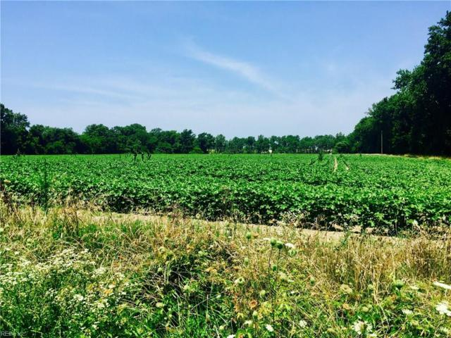 11+ Ac Old Cape Charles Rd, Northampton County, VA 23310 (#10139579) :: Reeds Real Estate