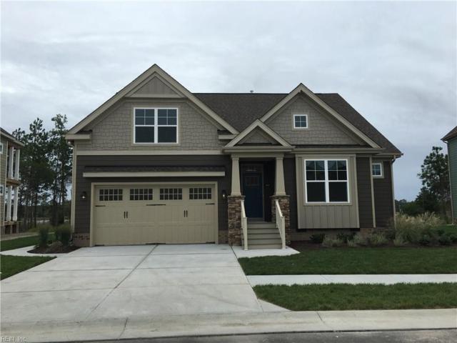 181 Tranquility Trce, Chesapeake, VA 23320 (#10139764) :: Rocket Real Estate