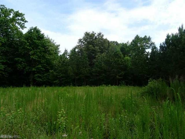 1.15AC Kenmere Ln, Isle of Wight County, VA 23430 (#10140518) :: Berkshire Hathaway Home Services Towne Realty