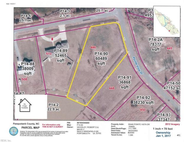 446 Pointe Vista Dr, Pasquotank County, NC 27909 (#10141022) :: The Kris Weaver Real Estate Team