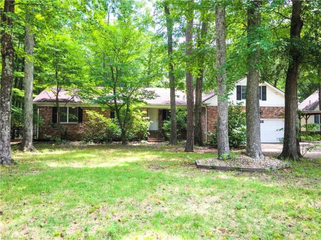 3637 Mill Bridge Way, Chesapeake, VA 23323 (#10141071) :: Berkshire Hathaway Home Services Towne Realty