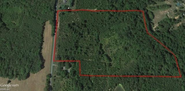 30.5ac Beaver Pond Rd, Halifax County, VA 24577 (#10145350) :: The Kris Weaver Real Estate Team