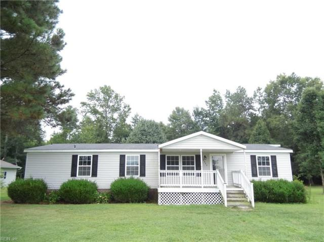 9022 Mill Swamp Rd, Isle of Wight County, VA 23430 (#10145856) :: RE/MAX Central Realty