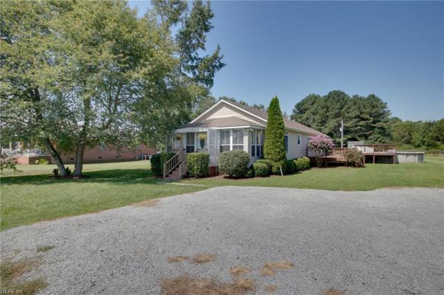 1103 Farmview Ln, Suffolk, VA 23434 (#10146068) :: Green Tree Realty Hampton Roads
