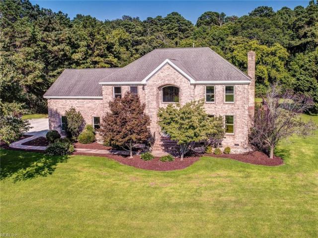 4336 Lake Prince Dr, Suffolk, VA 23434 (#10146076) :: Green Tree Realty Hampton Roads