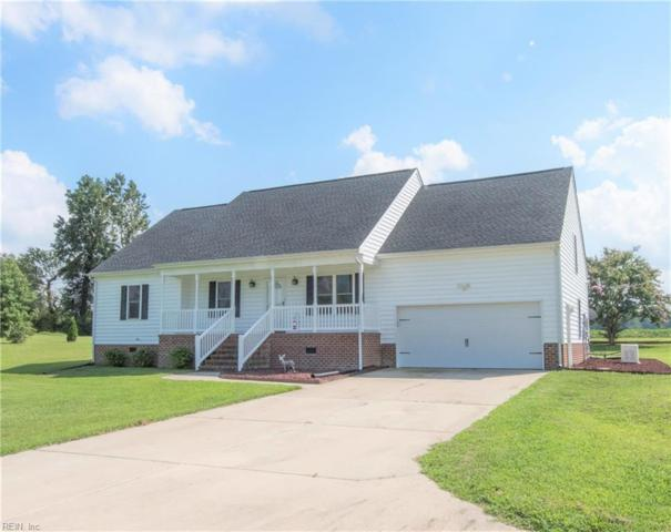 17024 Trump Town Rd, Isle of Wight County, VA 23487 (#10146094) :: RE/MAX Central Realty