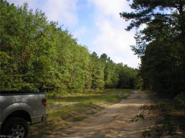 5+ Ac Sand Pit Rd, Isle of Wight County, VA 23898 (#10146499) :: Austin James Real Estate