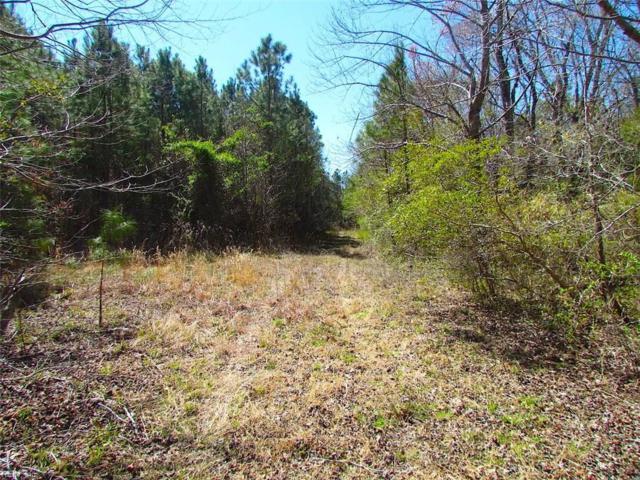 15 Ac Meadow Country Rd, Suffolk, VA 23434 (#10149033) :: Abbitt Realty Co.
