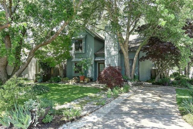 1101 Coriander Ct, Virginia Beach, VA 23462 (#10150816) :: Hayes Real Estate Team