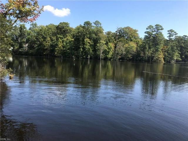49 Ac Murphy Mill Rd, Isle of Wight County, VA 23487 (MLS #10151242) :: Chantel Ray Real Estate