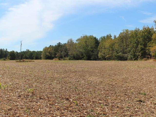 29.25 Ac Devils Three Jump Rd, King & Queen County, VA 23091 (MLS #10155795) :: Chantel Ray Real Estate