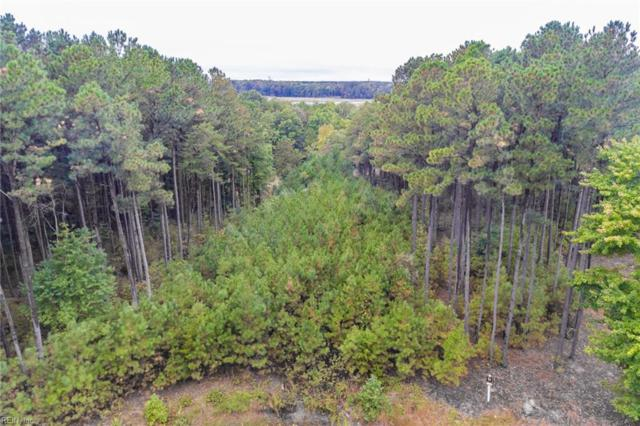 300 Lawnes Neck Dr, Isle of Wight County, VA 23430 (#10157304) :: Atlantic Sotheby's International Realty