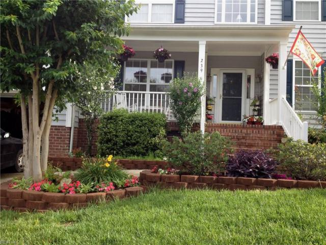 239 N Benjamin Howell St, Williamsburg, VA 23188 (#10157484) :: RE/MAX Central Realty