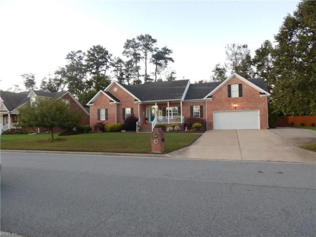 3329 Mintonville Point Dr, Suffolk, VA 23435 (#10158276) :: Green Tree Realty Hampton Roads
