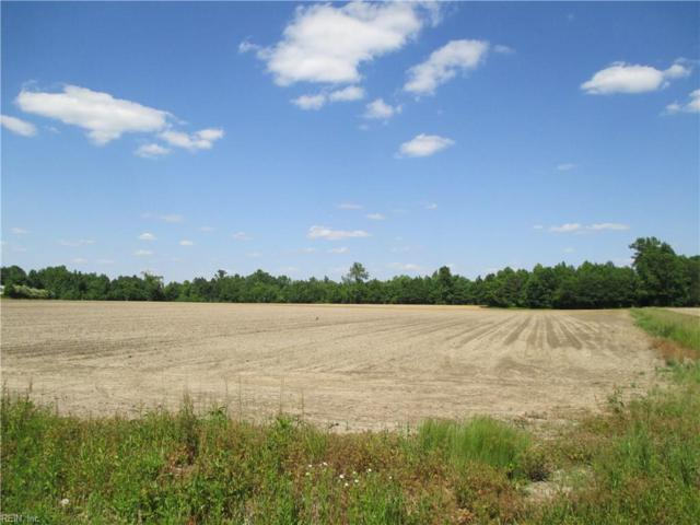 Lot 10 Sunbeam Rd, Southampton County, VA 23851 (#10161384) :: The Kris Weaver Real Estate Team