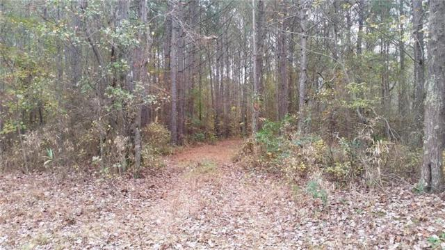 L 3 Joyners Bridge Rd, Isle of Wight County, VA 23487 (MLS #10162162) :: Chantel Ray Real Estate