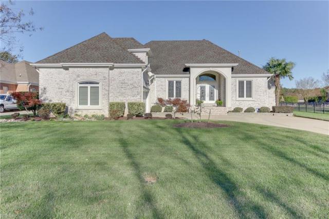 2932 Heron Ridge Dr, Virginia Beach, VA 23456 (#10162401) :: Berkshire Hathaway HomeServices Towne Realty
