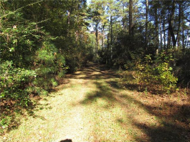 3218 Goodwin Neck #B Rd, York County, VA 23692 (MLS #10162455) :: Chantel Ray Real Estate
