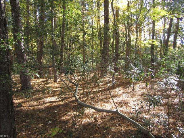 3300 Goodwin Neck Rd, York County, VA 23692 (MLS #10162459) :: Chantel Ray Real Estate
