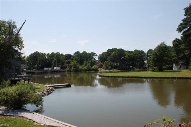 7419 Dehlman Ave, Norfolk, VA 23505 (#10162529) :: The Kris Weaver Real Estate Team
