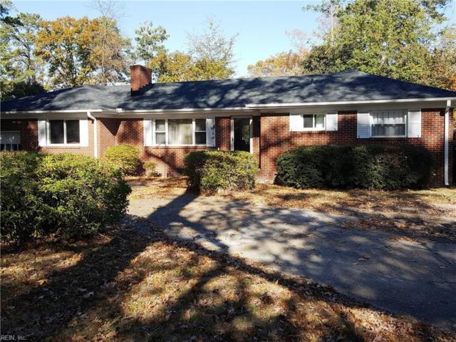 1636 Springmeadow Blvd, Norfolk, VA 23518 (#10162969) :: Hayes Real Estate Team