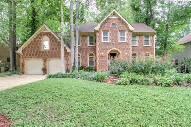 1121 Smokey Mountain Trl, Chesapeake, VA 23320 (#10162991) :: Hayes Real Estate Team