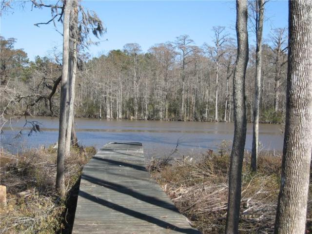 242 Pine Point Rd, Perquimans County, NC 27944 (#10166565) :: The Kris Weaver Real Estate Team