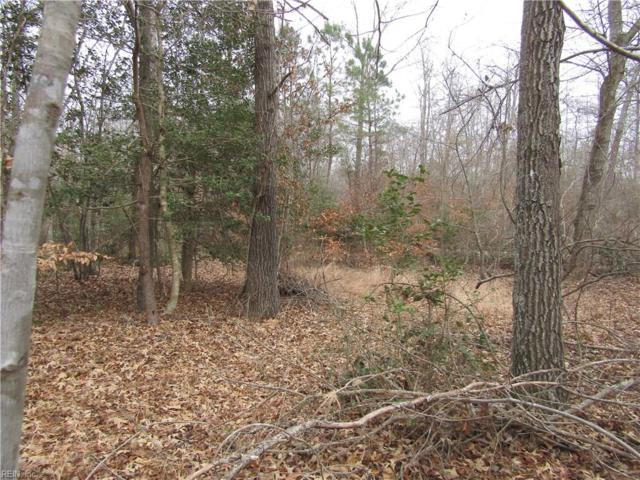 10.51A Mills Point Ln, Isle of Wight County, VA 23487 (#10166917) :: Austin James Real Estate