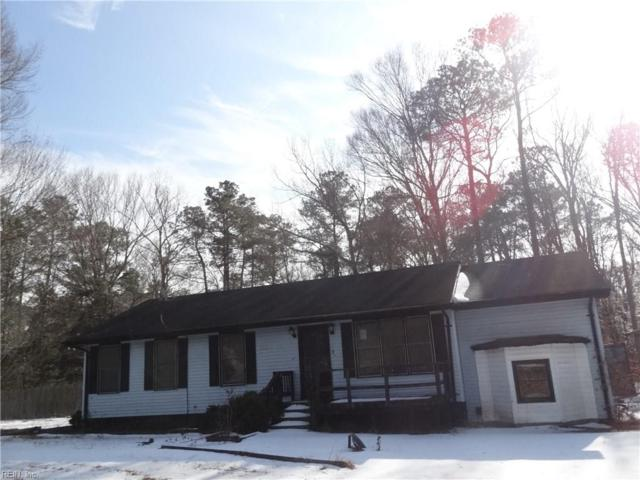 112 Butlers Pointe Ln, Isle of Wight County, VA 23430 (#10170207) :: Berkshire Hathaway HomeServices Towne Realty
