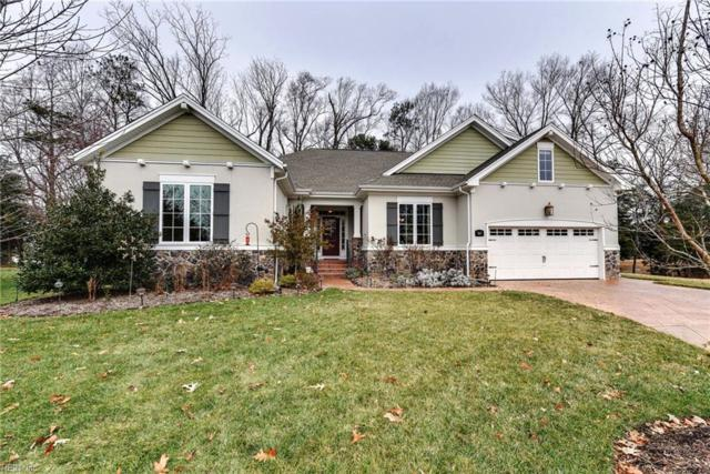 3617 Blue Stem Ct, Suffolk, VA 23435 (#10170295) :: Resh Realty Group