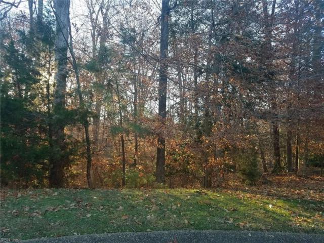 108 Pipe Kiln Ct, Williamsburg, VA 23185 (#10170853) :: Rocket Real Estate