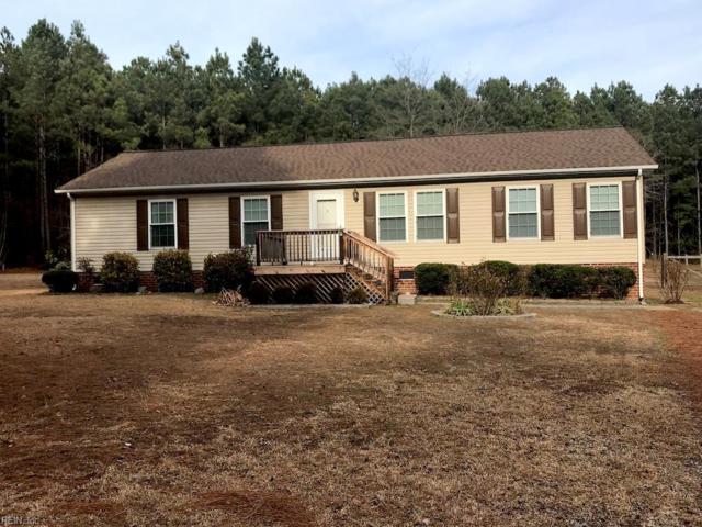 21453 Medicine Springs Rd, Southampton County, VA 23837 (#10171028) :: Abbitt Realty Co.