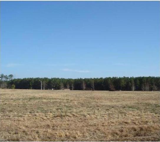 Lot 13 Amanda Loop, Southampton County, VA 23866 (#10171077) :: The Kris Weaver Real Estate Team