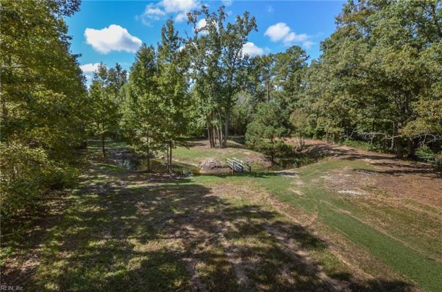 2382 Cherry Grove Rd, Suffolk, VA 23438 (#10171089) :: Rocket Real Estate