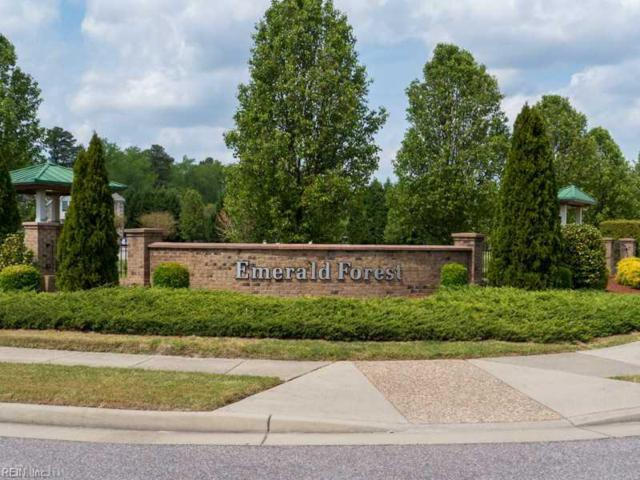 1528 Peyton Ln, Chesapeake, VA 23320 (#10172230) :: Abbitt Realty Co.