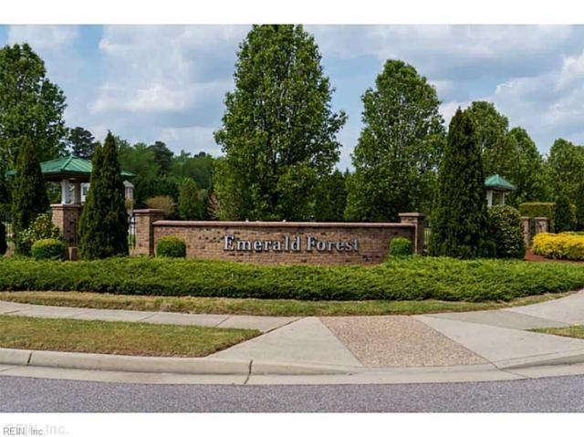 1508 Peyton Ln, Chesapeake, VA 23320 (#10172281) :: Abbitt Realty Co.