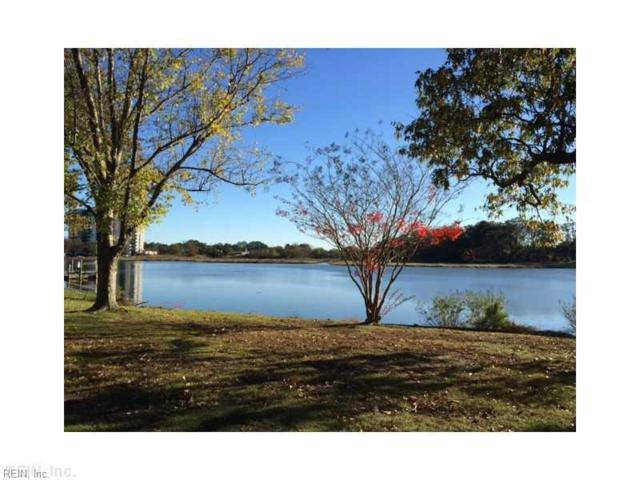 607 Roland Dr, Norfolk, VA 23509 (MLS #10172534) :: Chantel Ray Real Estate
