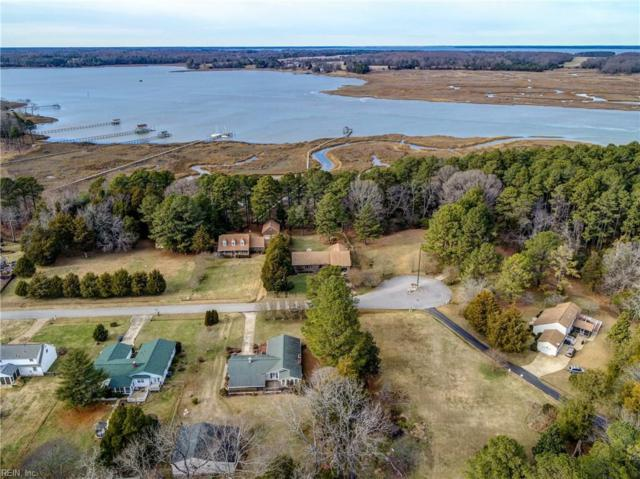 48 Riverside Dr, Isle of Wight County, VA 23430 (#10172819) :: The Kris Weaver Real Estate Team