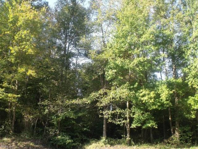 .96AC County Dr, Sussex County, VA 23888 (#10175250) :: Abbitt Realty Co.