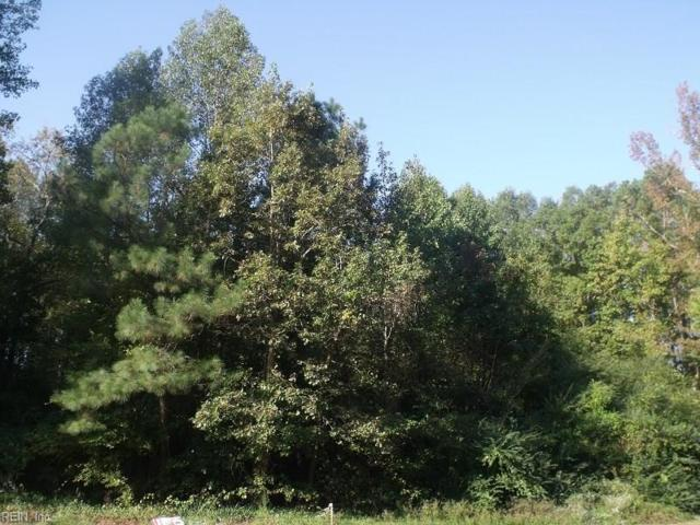1.15 County Dr, Sussex County, VA 23888 (#10175252) :: Abbitt Realty Co.