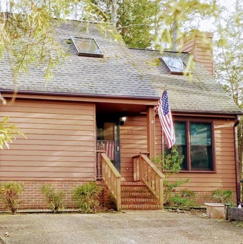 732 Autumn Cir, James City County, VA 23188 (#10176369) :: Abbitt Realty Co.