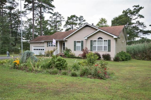 737 Holly Point Rd, Mathews County, VA 23109 (#10176432) :: Abbitt Realty Co.