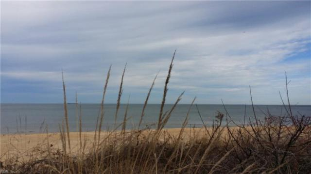 3226 E Ocean View Ave #1, Norfolk, VA 23518 (#10176592) :: Abbitt Realty Co.