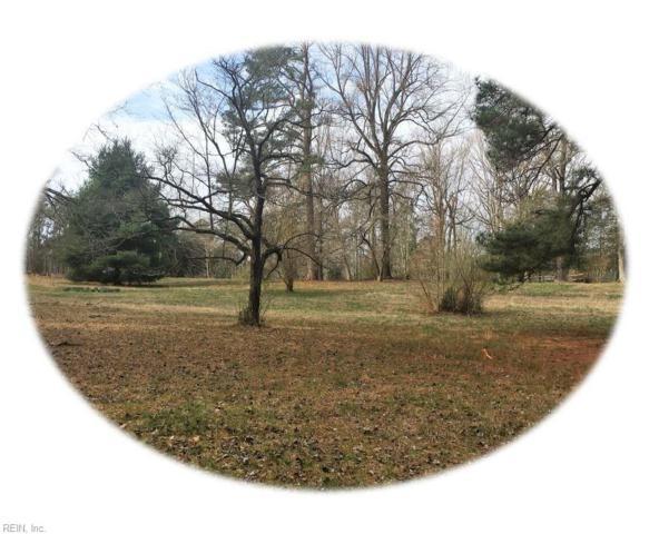 9919 Sycamore Landing Rd, James City County, VA 23188 (#10178093) :: The Kris Weaver Real Estate Team