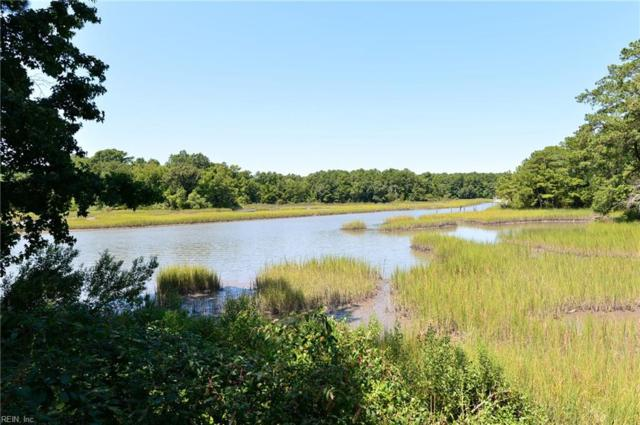 6329 Townsend Pl, Suffolk, VA 23435 (MLS #10179387) :: Chantel Ray Real Estate